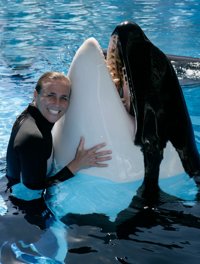 EXCLUSIVE: These are exclusive images of the veteran trainer who was tragically killed by a 12,000lb killer whale. Dawn Brancheau, 40, was snatched by her ponytail and fatally attacked by Tilikum, SeaWorld's star attraction, during a live show in February 2010. These images, taken 11 months earlier in March 2009, show the trainer working with other whales at the world famous Florida theme park. Brancheau, who had 16 years of experience working with Orcas, was dragged underwater before being thrashed around in the 30-year-old whale's mouth in front of horrified onlookers. Pictured: Dawn Brancheau Ref: SPL202885 160810 EXCLUSIVE Picture by: Barry Bland / Splash News Splash News and Pictures Los Angeles: 310-821-2666 New York: 212-619-2666 London: 870-934-2666 photodesk@splashnews.com