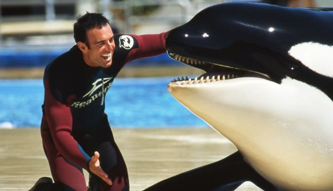 Former SeaWorld trainer John Hargrove pictured with an orca whale. He resigned in 2012.